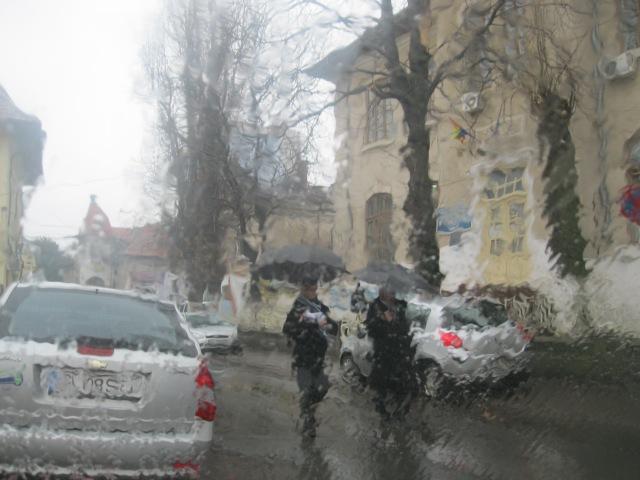 Ploaie in luna lui...februarie :)